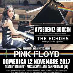 Aysedeniz Gokcin - Il Concerto